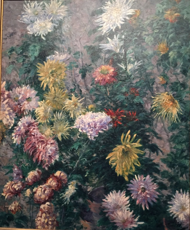 7 crysanthum